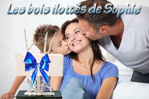 Les_bois_flottes_de_Sophie
