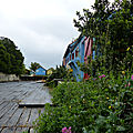 L'île d'Oéron (11)
