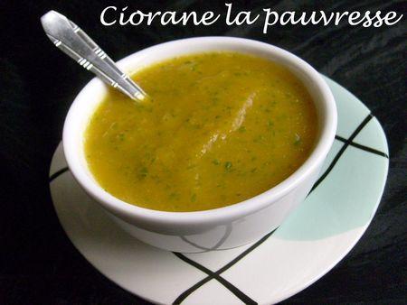 soupe_roquette