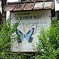 Visite du musée des insectes à cacao