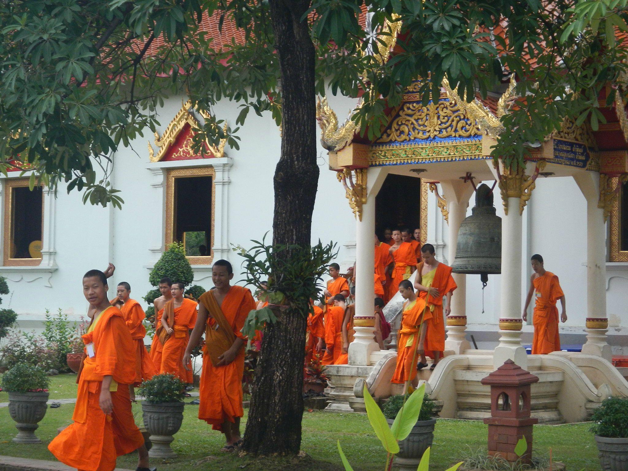 Chiang M moines en vrai DSCN2403