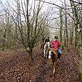 Balade à cheval dans la forêt P1080237