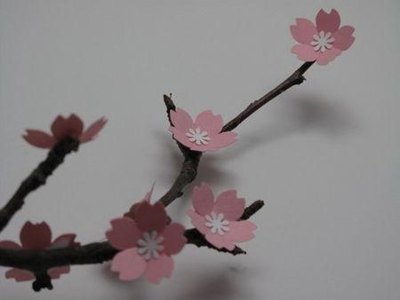 blossom_branch