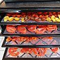 tomates séchées www.passionpotager.canalblog.com