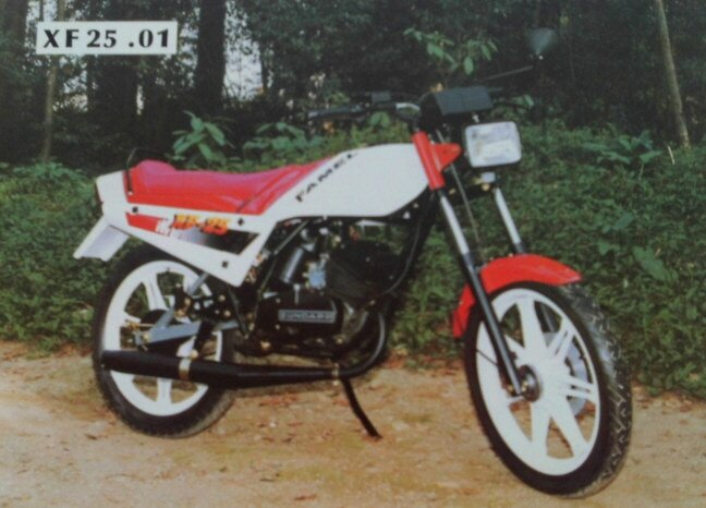 FamelXF25