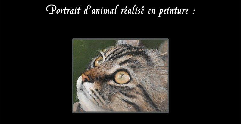 Portraits BlogDécorsAnnimaux