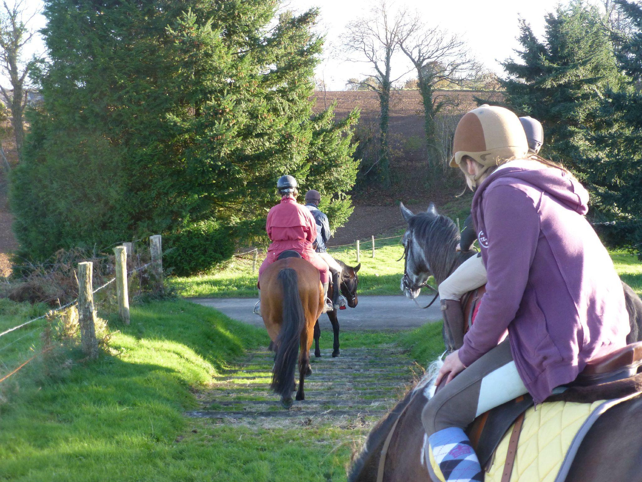 balade liberté - Mesnil Ozenne à cheval (21)