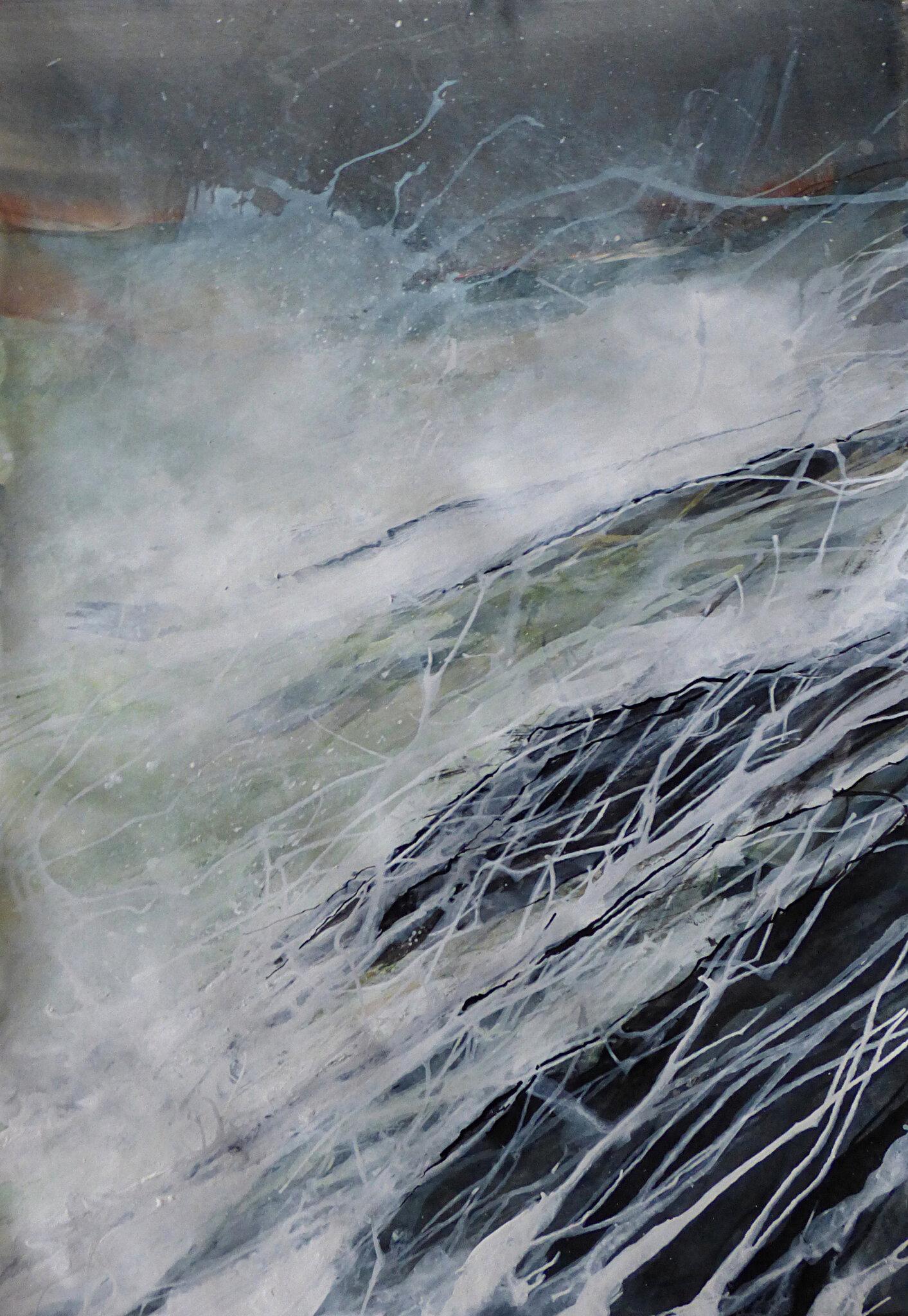 Sédition sur la Côte sauvage 3, mars 2017, encre sur papier, 59 x 42 cm