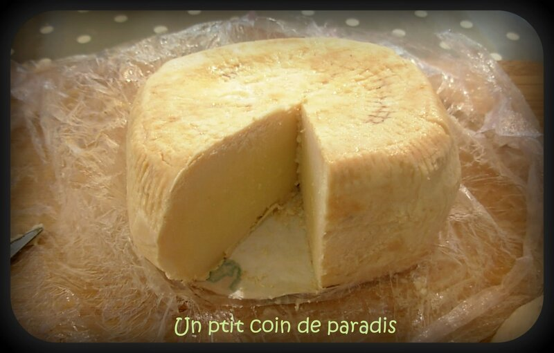 fromage corse
