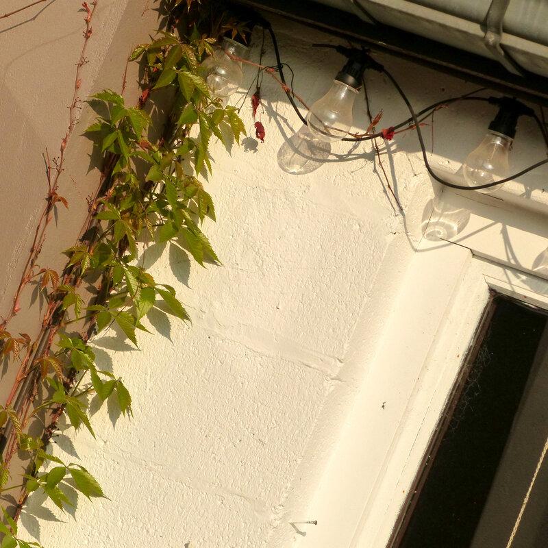 aaa jardin6