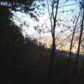 Mont royal 21oct 008