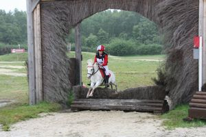 dressage et cross 059