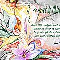 Le secret de chlorophylle