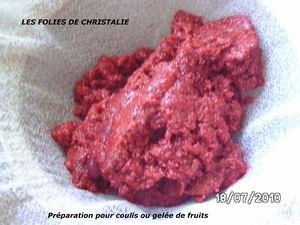 Pr_paration_pour_coulis_ou_gel_e_de_fruits_3