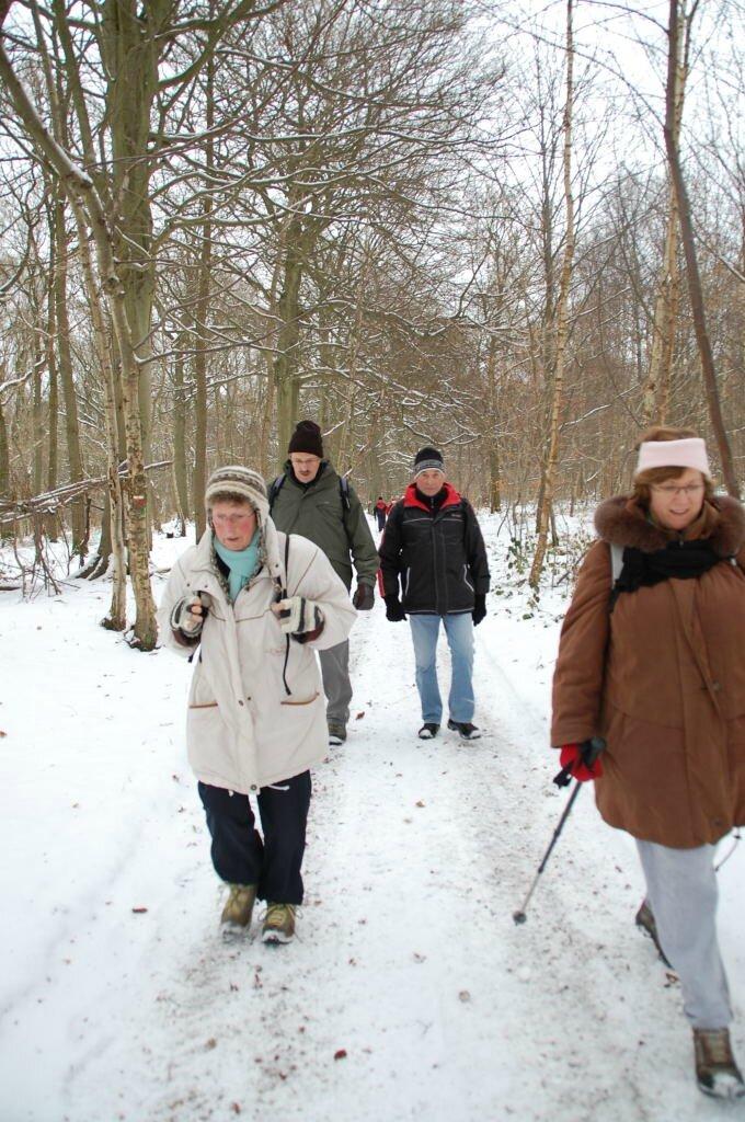 Janvier 2010 - (5)