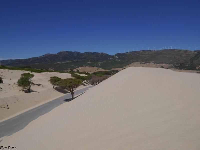 La route dans les dunes