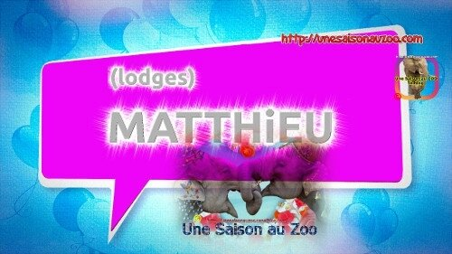MATTHiEU lodges