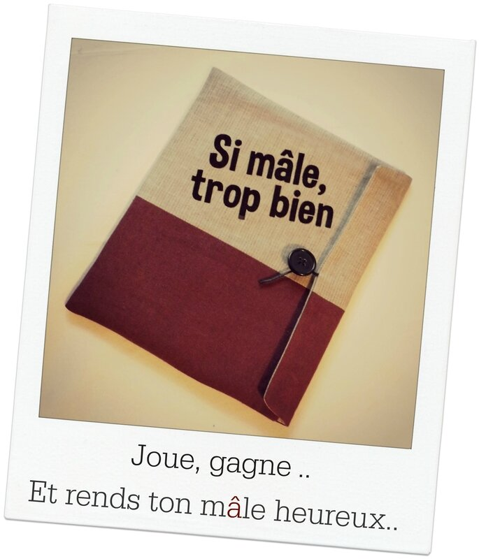 Pochette tablette pola pour jeu Juin 2014