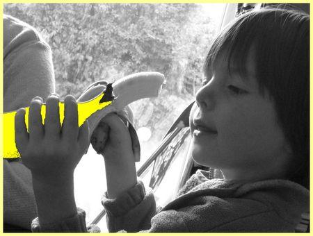 JULO_banane