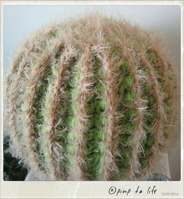 ®pimp ta life cactus 1