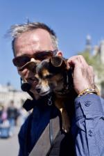 Dogman 2017 - 2