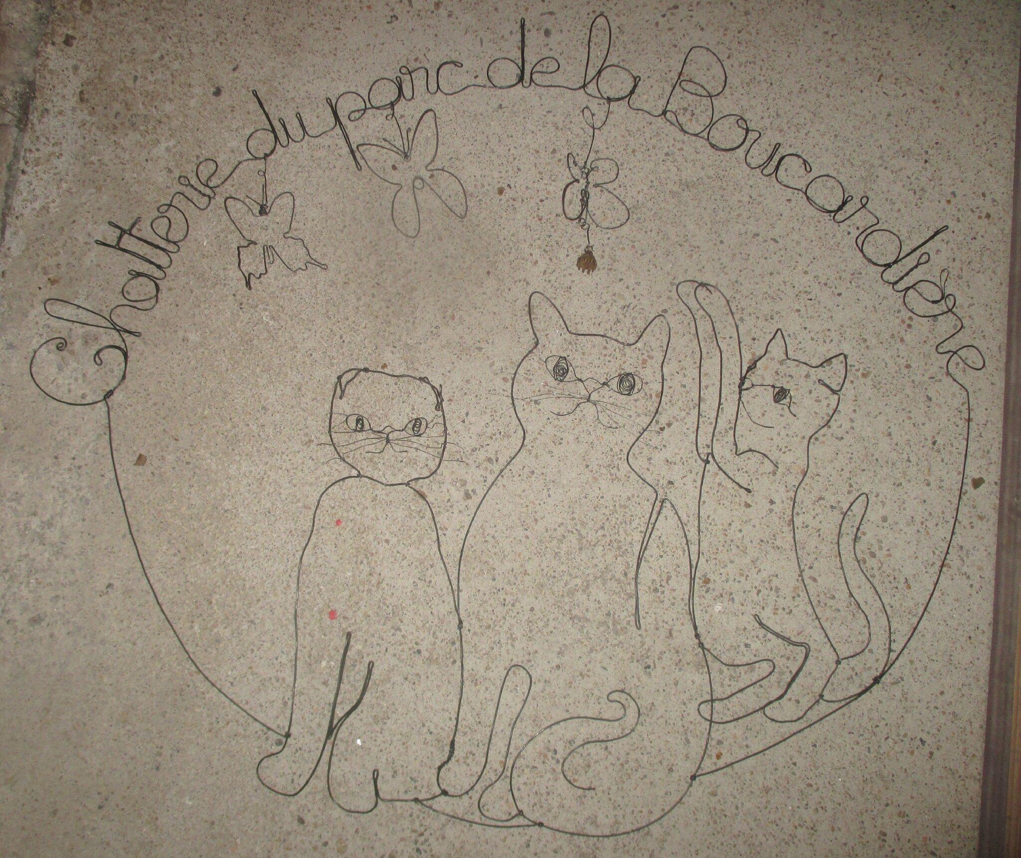chats race fil de fer