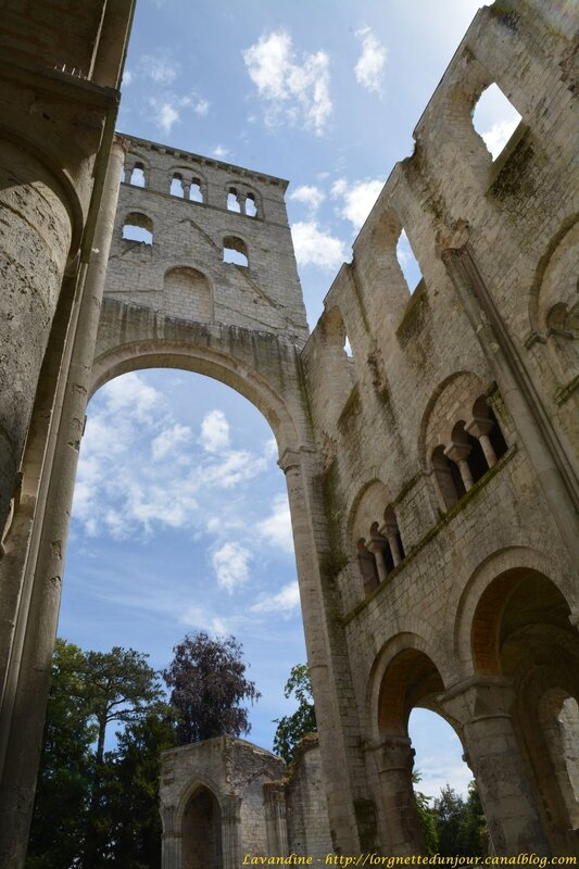 6 jumieges 13 07 16 (36)