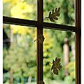 L'automne à 2 ou 4 mains