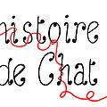 Histoire de chat, details et fin!
