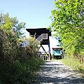 Saint-Martin-de-Seignanx, les barthes, observatoire (40)