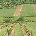 Photos de la Bourgogne