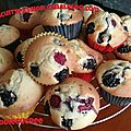 Muffins super moelleux aux fruits rouges 083