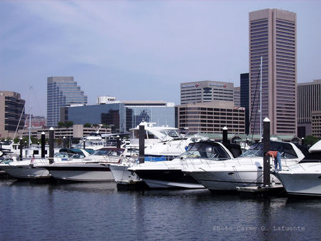 Baltimore_Harbor_Carme_G