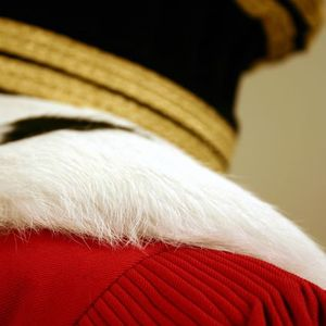 magistrats-robe-rouge-1