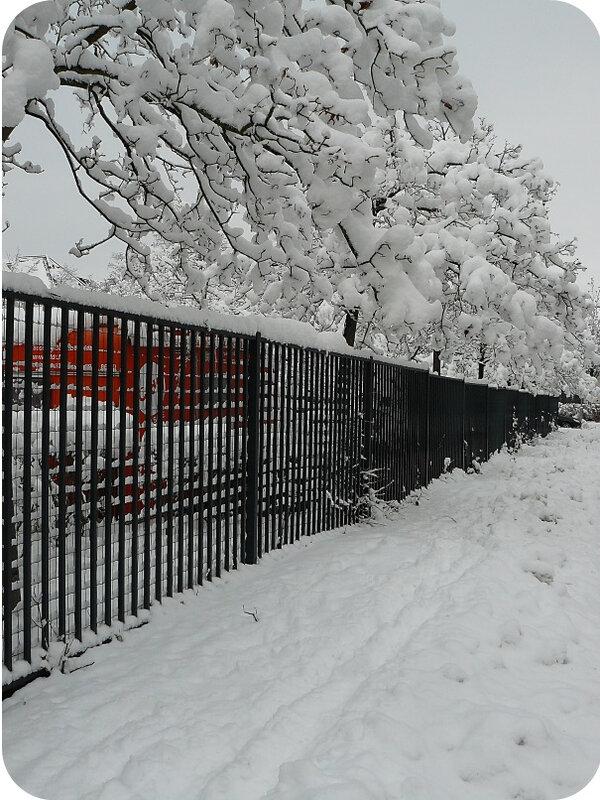 Quartier Drouot - Photo neige 28