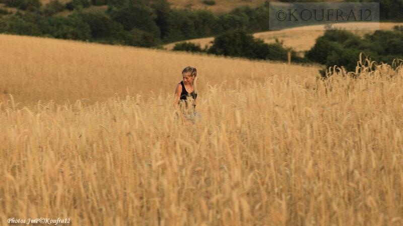 Photos JMP©Koufra 12 - Cornus - Moisson à l'ancienne - 22072019 - 0374