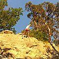 Exceptionnel: gaspard et paulin veulent aller grimper !