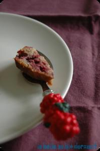Cake_fruits_rouges3