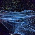 halloween #1 : des yeux dans la nuit