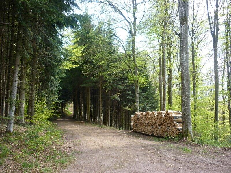 saalbach chapelle (10)
