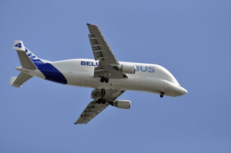 Airbus_Beluga