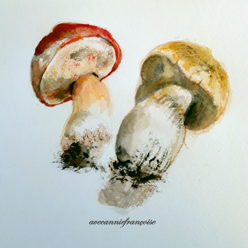 cèpes aquarelle