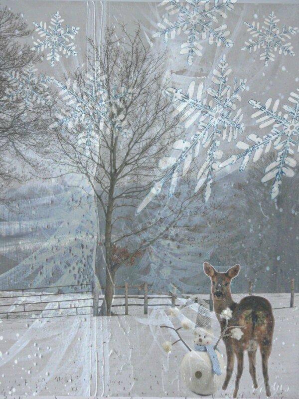 arbre neige 30 [800x600]