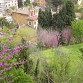 Rome avril 2009 095