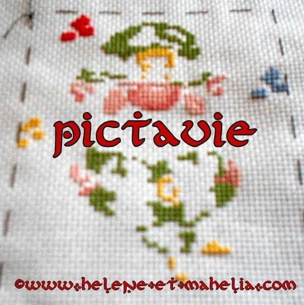 pictavie BE_salmars14_3