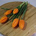 Tulipes sur carottes