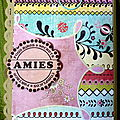Mini album Amies