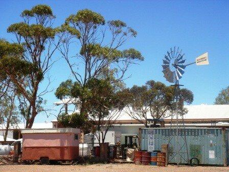 Australie Faune Flore Paysages - janvier 2005 (43)