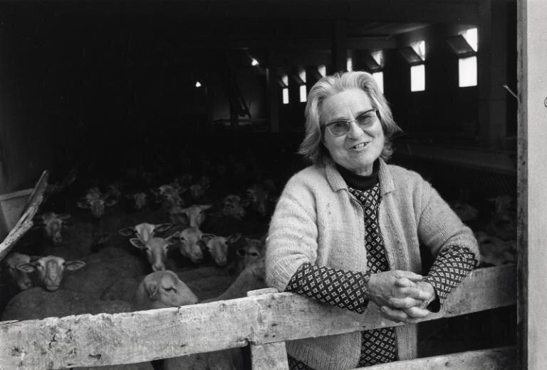 Aimée Castain. Une lettre des années 70.