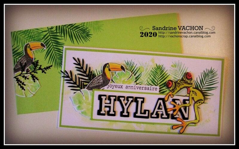 Sandrine VACHON carte HYLAN pcc 625 (1)
